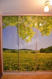Светлый пейзаж с перспективой на двери шкафа купе