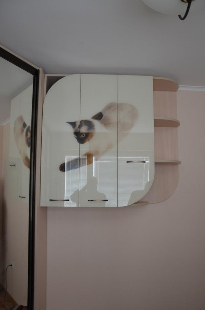 Навесной шкаф с фотопечатью под стеклом